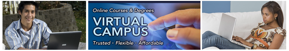 Banner image for Virtual Campus