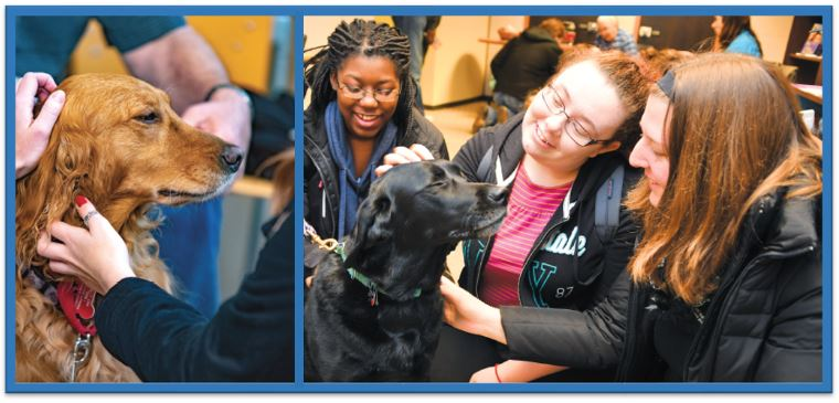 Two pictures with dogs, their handler's and students interacting